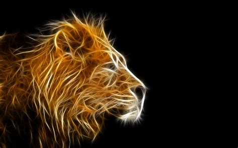 wallpaper 3d lion over 50 3d wallpaper images for free desktop download