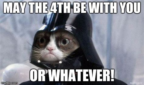 May The 4th Be With You Meme - grumpy cat star wars meme imgflip