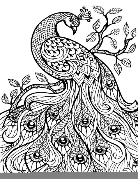 coloring pages zentangle  adult coloring  zentangle
