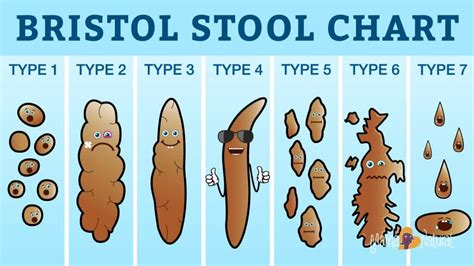 What Foods Make Your Stool Soft by What Your Says About Your Health For Serious