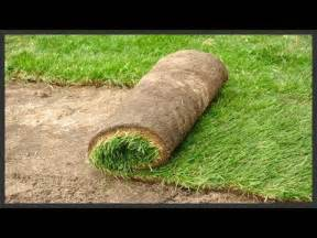 grass patches home depot how to install sod