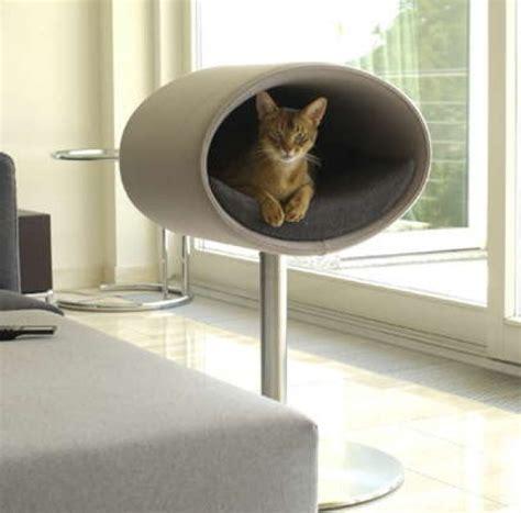 cats house design  rondo stand home design garden