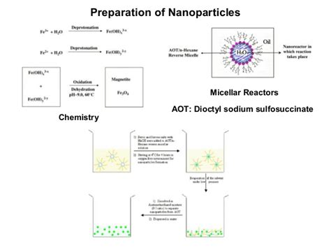 Silica Nanoparticles Detox by Presentation