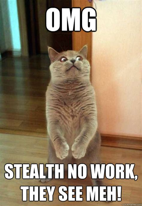 Working Cat Meme - funny cat meme work www pixshark com images galleries