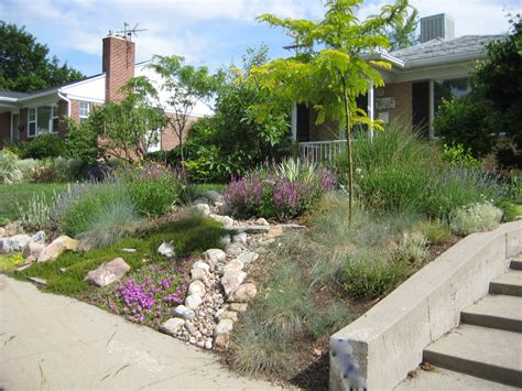 drought tolerant front yard lush inspiration hip house