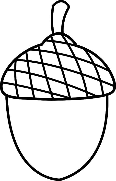 coloring page of an acorn summer acorn coloring pages summer acorn coloring pages