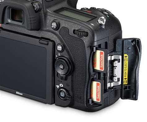 Memory Card Nikon image gallery nikon sd