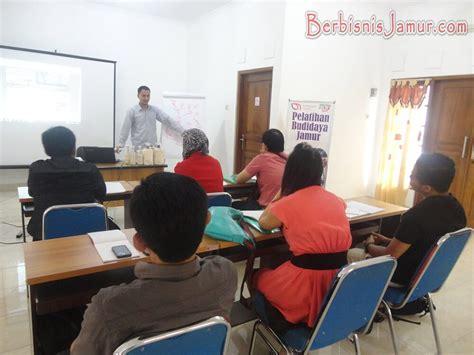 Bibit Jamur Tiram Bekasi asiknya jamur tiram bersama bisnis ukm