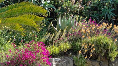 jardin en mediterranee cr 233 er son jardin en m 233 diterran 233 e domaine du rayol