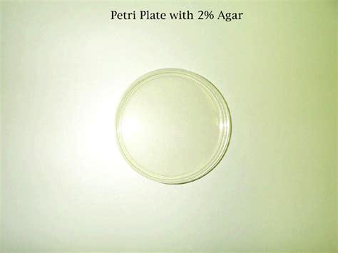 Molecular R Agar Agar For Jelly Fliud Gel Caviar Molecular Gastronomy osmosis diffusion new