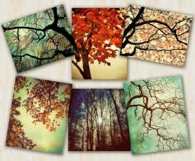 Tree Home Decor by Tree Photography Home Decor Nature Prints By Carlchristensen