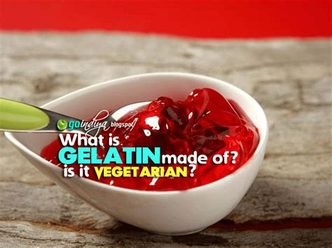 what is gelatin made of is gelatin vegetarian vegan natural home remedies simple and effective