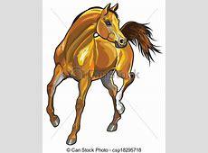 Brown arabian horse . Arabian horse,front view picture ... Mustang Head Logo