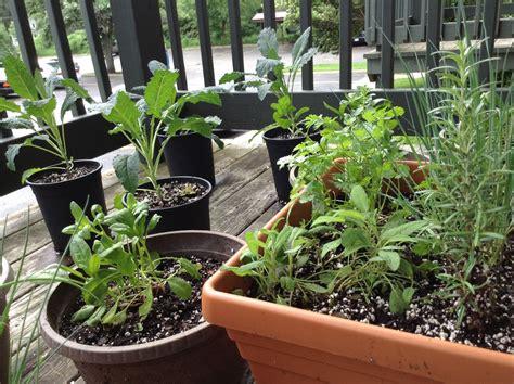 Balcony Herb Garden Ideas Starting A Balcony Herb Garden Richly Rooted