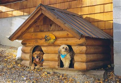 two dog house 41 cool luxury dog houses for your pooch