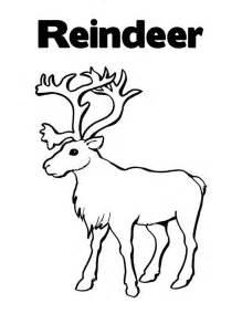 Reindeer coloring pages for kids printable free printable reindeer