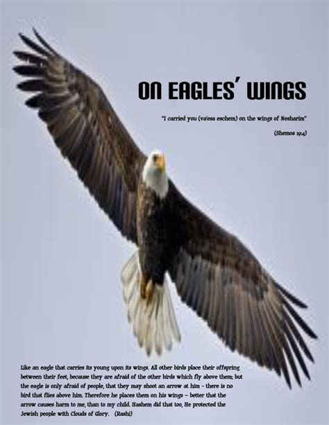 On Wings Of Eagles 1 on eagles wings rolling rabbi