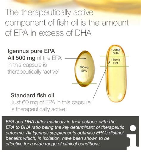 i supplement meaning epa vs dha in fish epa and dha explained