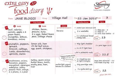 easy printable food journal exle of slimming world sp food diary sw sp