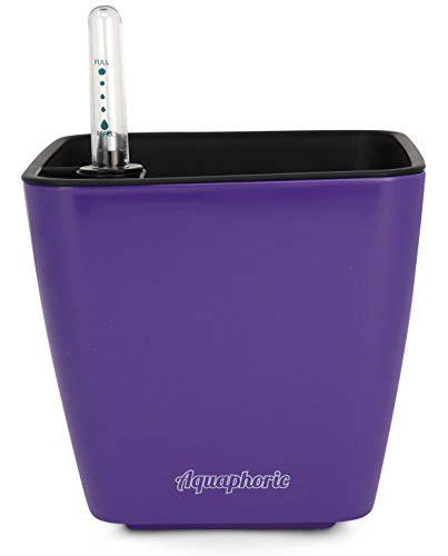 modern contemporary indoor self watering pots allmodern aquaphoric self watering planter 5 fiber soil