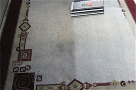 ta rug cleaning on site area rug cleaning cape coral florida and fort myers