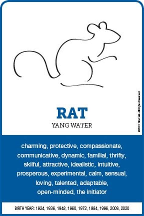new year rat characteristics 16 best year of the rat images on