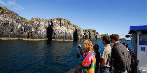 isle of may boat trips north berwick isle of may reserve manager david pickett answers your