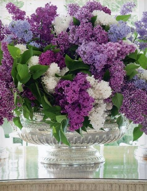 a centerpiece gorgeous lilacs by carolyne roehm