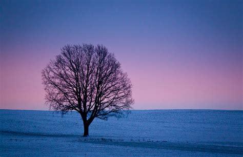 imagenes de paisajes invernales las im 225 genes invernales m 225 s espectaculares en fotos a