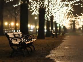 central park lights bench central park evening light image