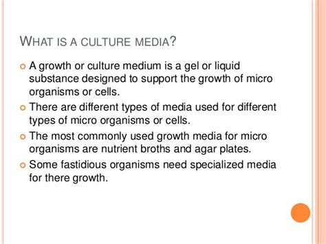 a culture of growth routinely used culture media in microbiology lab