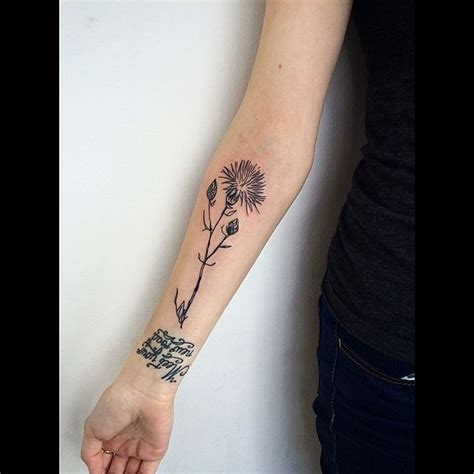 70 scottish thistle tattoo designs flowertattooideas com