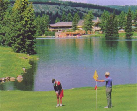 doodlebug golf doodlebug golf tournament cseg recorder