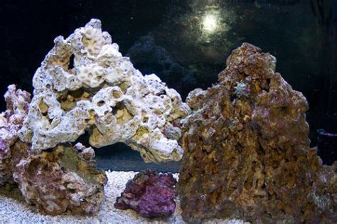on the rocks how to build a saltwater aquarium reefscape live rock how to set up a saltwater aquarium easily part