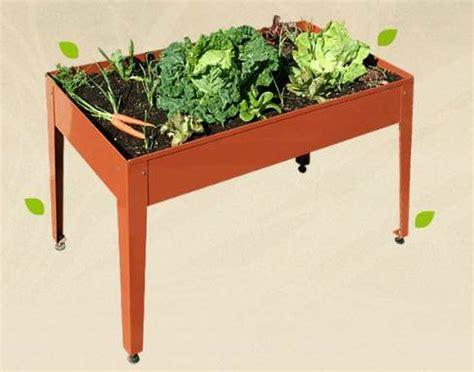 tavolo orto come coltivare frutta e verdura biologica senza spendere soldi