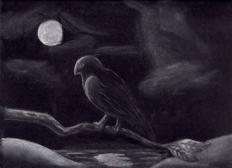 Black And White Chalk Drawings by Chalk Drawing On Black Paper By Rarkorn On Deviantart
