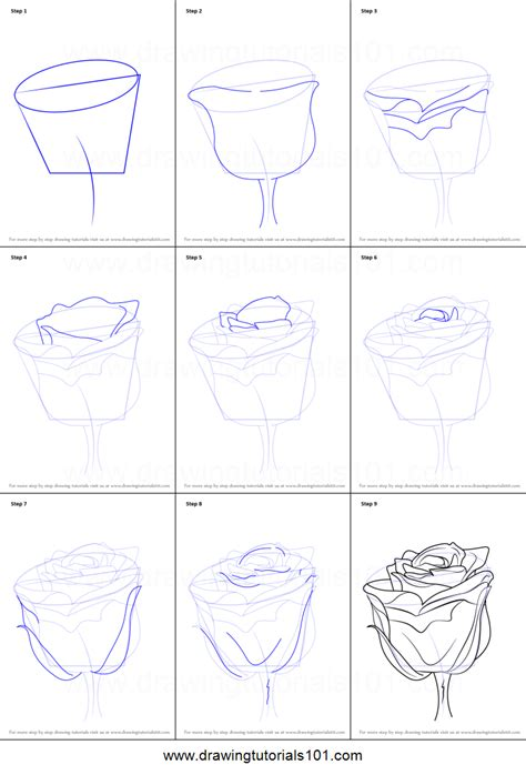 where to draw step by step drawing of a drawings nocturnal