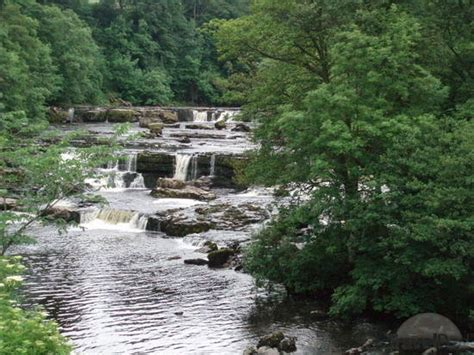 tattoo leeds tripadvisor 1000 images about wensleydale on pinterest general