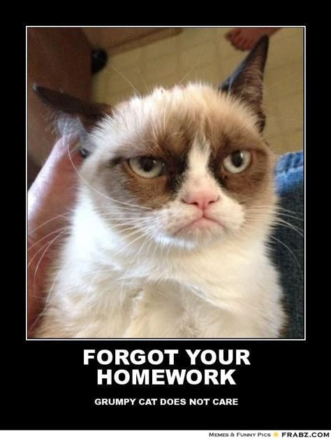 Teacher Meme Posters - kate mazur brue forgot your homework grumpy cat meme