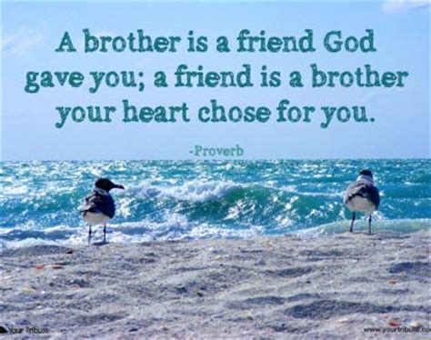 words of comfort for loss of brother loss of brother quotes your tribute