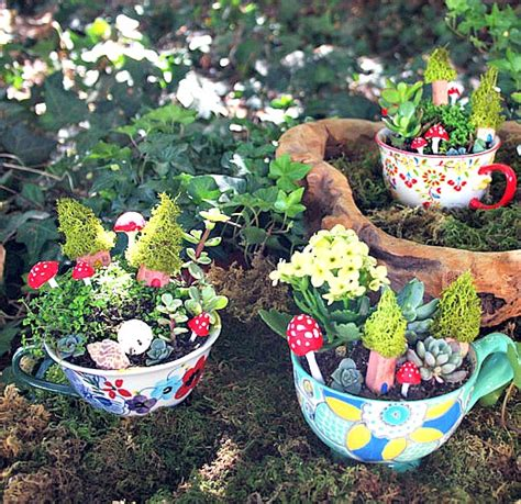 Hgtv Home Decorating Ideas 9 cute tea cup gardens a cultivated nest