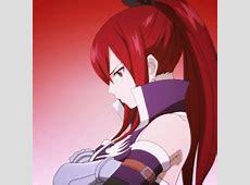 Erza Scarlet | Anime Amino Erza Scarlet Armor Types
