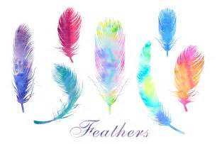 watercolor feathers png and eps file web elements on