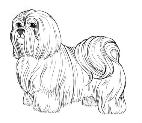 dog coloring pages bestofcoloringcom
