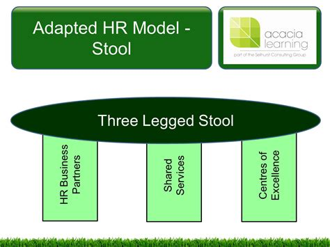 3 Legged Stool Model Ulrich managing and co ordinating the human resources function