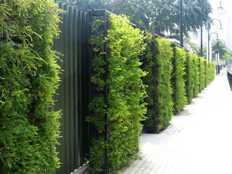 Green Walls by Green Wall Systems Tanks Green Walls Drainage Systems