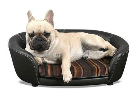 leather sofa with dogs scruffs regent handmade pet sofa bed for dogs