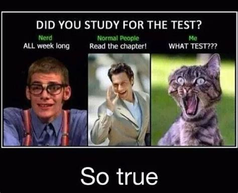 Meme Test - 17 best ideas about study meme on pinterest studying