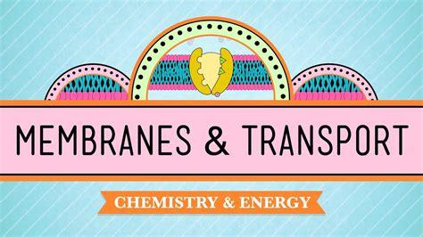 cell membrane transport youtube