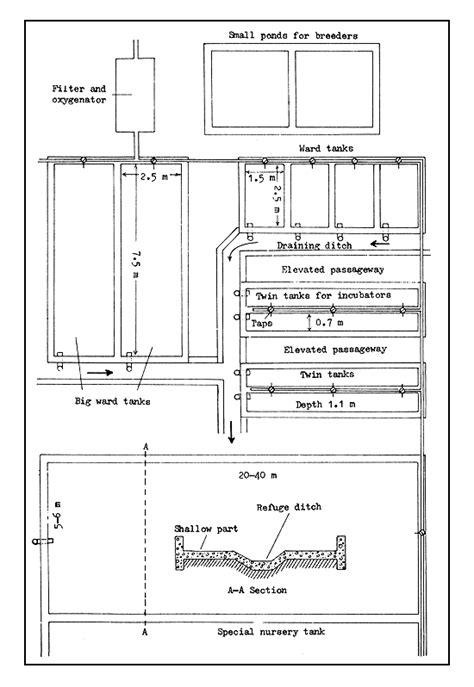 layout of hatchery pictures types of fish hatcheries fish hatchery